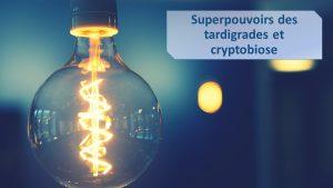 superpouvoirs-tardigrades-cryptobiose-lepangolin-com