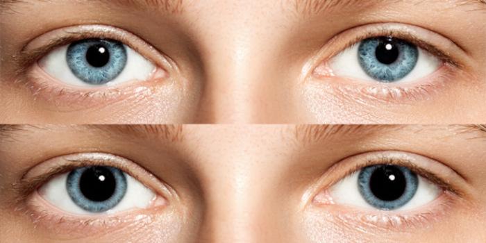 couleur-des-yeux-en-biologie-dilatation-pupille-emotion-lepangolincom